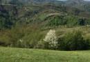 Selo Dulene okruženo Gledićkim planinama i Crnim vrhom